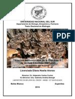 TESIS DOCTORAL ALONSO ELIANA.pdf