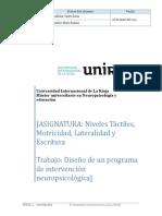 Diseño de un programa de intervención neuropsicológica.doc