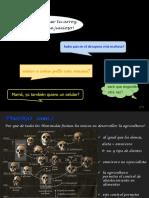 Conferencia Debouck Domesticación.pdf