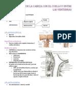 Articulaciones de La Cabeza Con El Cuello y Entre Las Vertebra1 (1)