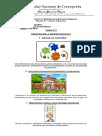 LizaAcosta-EDES-GE-UNC-2019 TAREA Nº 2.docx