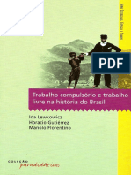 HoracioGutirrezetal.-Trabalhocompulsrio2008.pdf