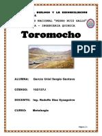 TOROMOCHO 22-07-18.docx