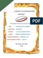 TIPOS DE FLUJO.docx