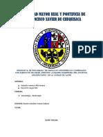 PROPUESTA DE PROGRAMA  DE EJERCICIOS HIPOPRESIVOS COMBINADO CON EJERCICIOSraysa monografia.docx
