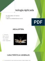 Entomología Aplicada 29