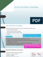 Circulacion Colateral e Isquemia