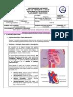 REINTERVENCION CARDIOPATIA CONGENITA CON CIERRE CIV CORRECCION DOBLE TRACTO DE SALIDA VD + PLASTIA PULMONAR.docx