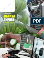 Cavendish Banana Export Business Feasibility Study (Proposal)