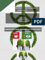 Diapositivascomportamiento Profesional y Ambiental