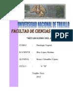 METABOLISMO DEL AZUFRE.docx