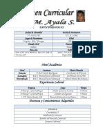 Resumen del Curriculum En Digital luis ayala.docx