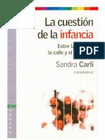 256164131-Libro-Sandra-Carli-Con-Art-de-Viviana-Minzi.pdf