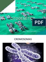 Cromosomas 3ero BGU G