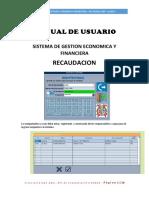 MANUAL DE USUARIO RECAUDACION.docx