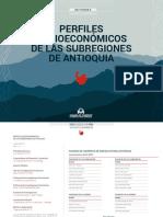 Informes Socioeconómicos de las subregiones de Antioquia.pdf