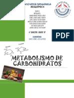 Metabolismo de Carb. (3)