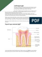 Mengenal perkembangan gigi.docx