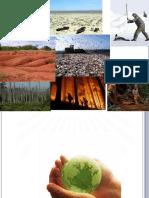 Ambiente e sociedade @@blog.pdf
