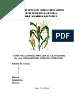 INFORME maiz.docx