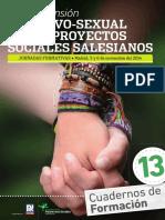 13 La Dimension Afectivo Sexual en Los Proyectos Sociales Salesianos