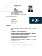 curriculum vítae.docx