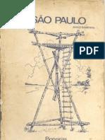 Pionerias São Paulo