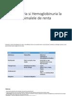 Hematuria Si Hemoglobinuria La Animalele de Renta [Autosaved]