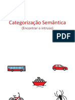 categorização - intruso.pdf