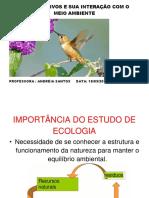 AULA RECUPERAÇÃO.DOCX