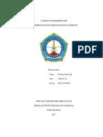 LAPORAN GEOMORFOLOGI.docx
