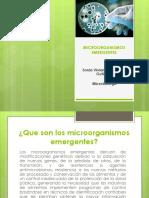 MICROORGANISMOS EMERGENTES