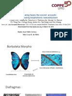 Ala de Mariposa Oye El Sonido Detección Acústica Utilizando Nanoestructura Biofotónica