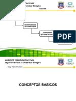 Ley de Gestión de La Diversidad Biológica (Art. 11_ Arts. 45 Al 55) Prof (1)