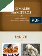 ANIMALES MAMÍFEROS (1).pptx