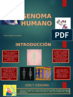 GENOMA HUMANO.pptx
