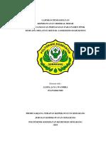 LAPORAN PENDAHULUAN III pernafasan PPOK melati 2 (bismillahirrohmanirrohim).docx