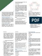 CRIPTICO DE ESTRUCTURA Y FASES PTO PUBLICO.docx