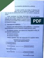 ubicación de la fonética en la ciencia lingüistica Amanda Betancourt.pdf
