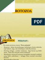 3 PROTOZOA.pptx
