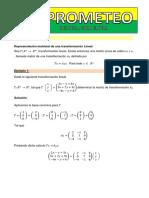 CL31REPRES MATRICIAL.pdf