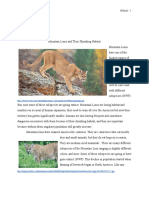 final mountain lion paper