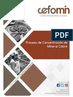 Manual Concentración de Minerales.pdf