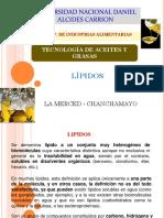 10. Lipidos Clasificacion Acidos Grasos