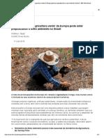 Como a Elogiada 'Agricultura Verde' Da Europa Pode Estar Prejudicando o Meio Ambiente No Brasil - BBC News Brasil