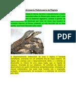 Desenvolvimento embrionário de répteis.pdf