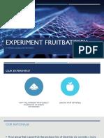 fruitbattery1  3