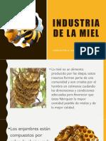 Presentacion de La Produccion de La Miel
