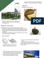ESPLANADE THEATRE_biomimicry_sunidhi.n.prasad.pptx