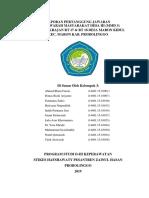 LPJ MMD 3.docx
